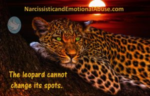 the-leopard-cannot-change