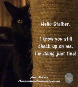 Hello Stalker